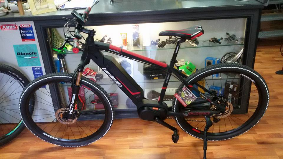 mountain bike a pedalata assistita